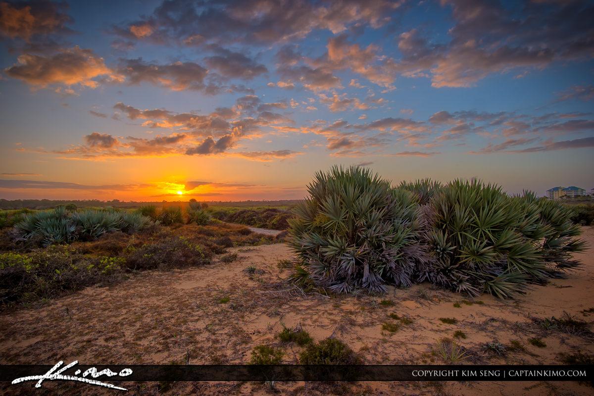 Juno Dunes Natural Area Sunset Over Sand Dunes