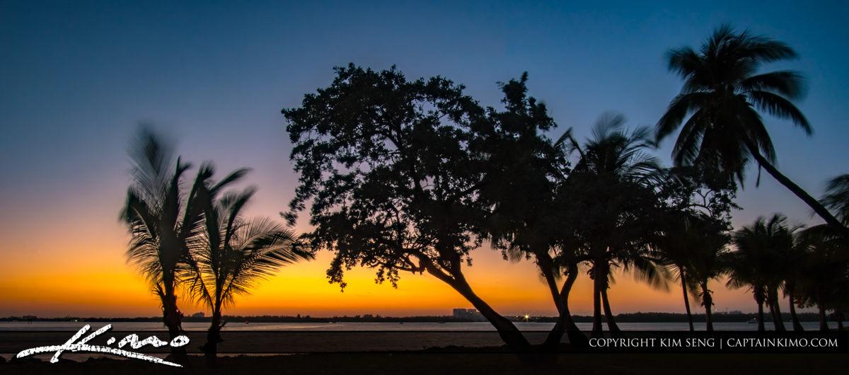 Haulover Park Florida Sunset Coconut Tree