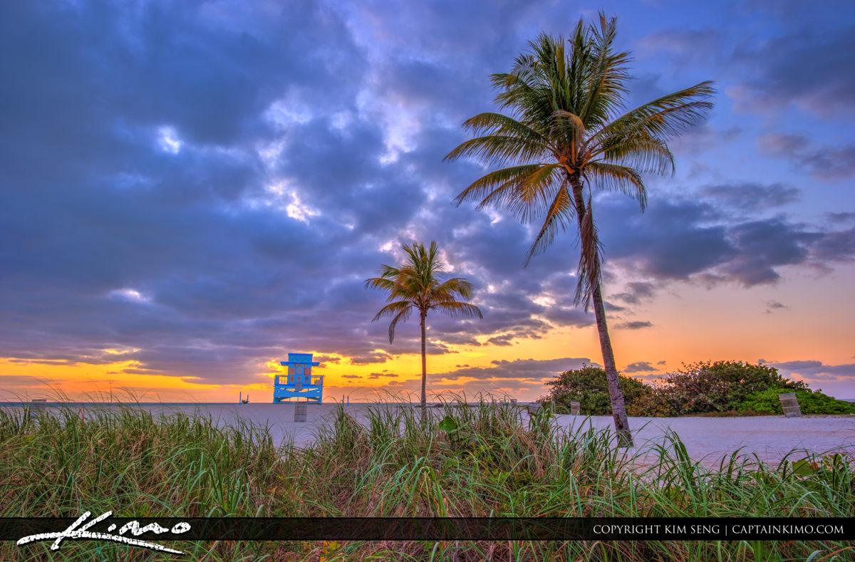 Haulover Park Florida Sea Grass