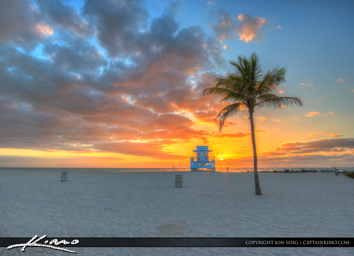 Haulover Park Florida Coconut Tree and Guard Tower