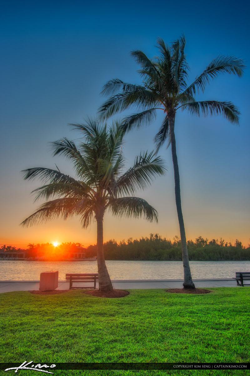 Sunset Red Reef Park Sunset Boca Raton Florida Coconut Trees