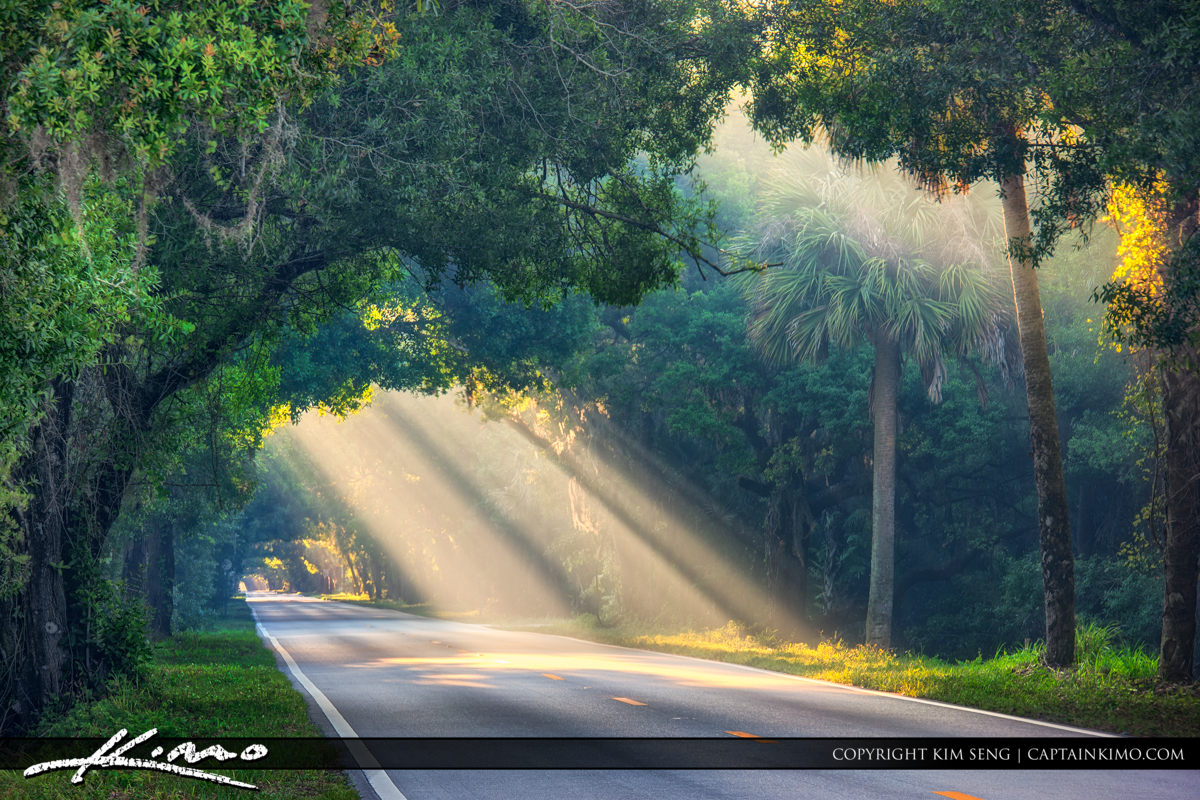 Martin Highway County Road 714 Rays of Light