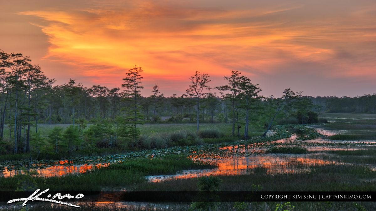 Sunset Over Florida Wetlands Palm Beach Gardens