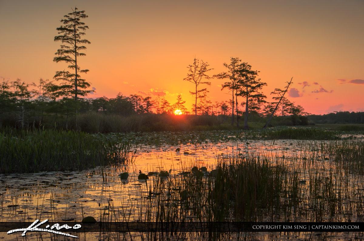 Palm Beach Gardens Natural Area Sunset Wetlands