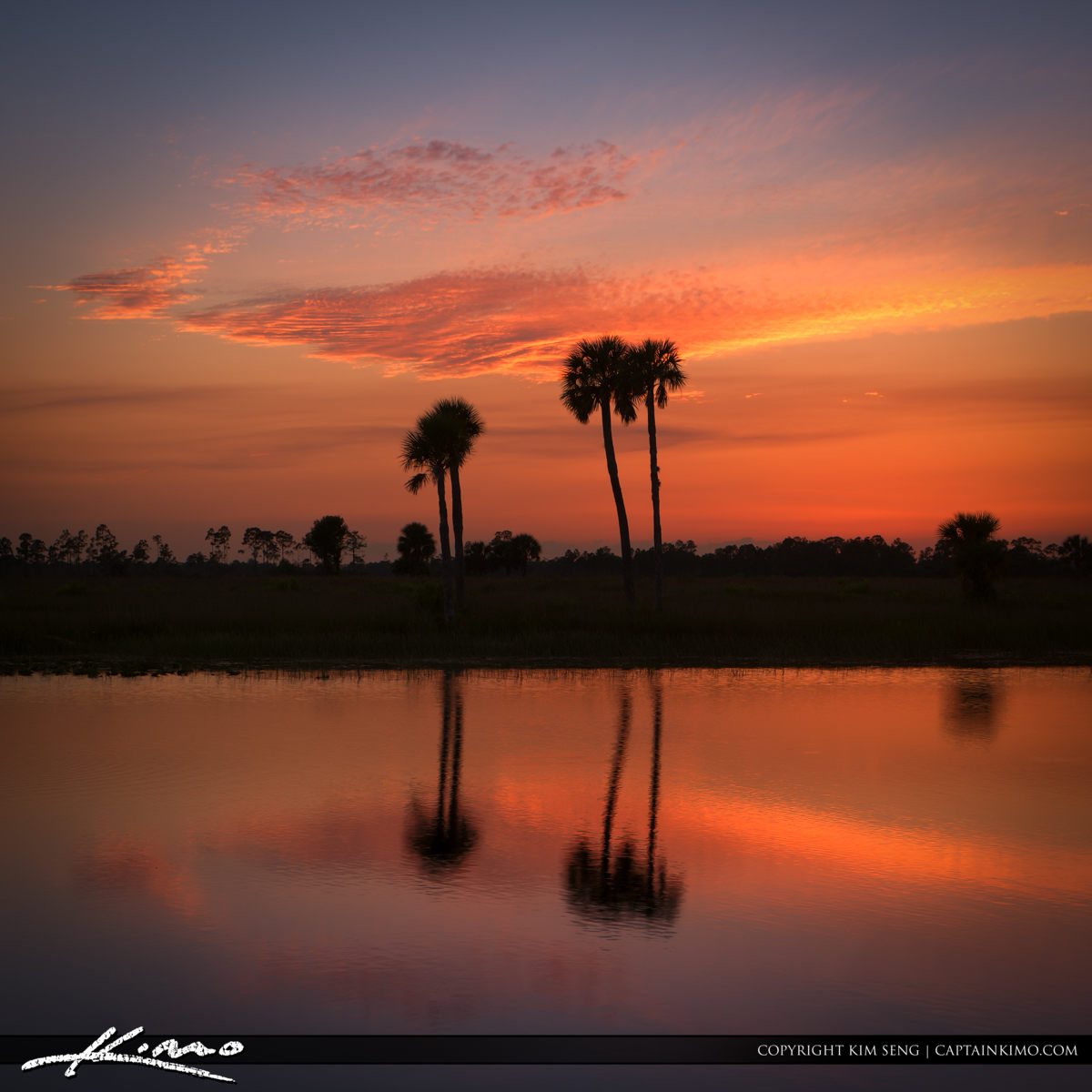 Florida Landscape at Sunset Pine Glades Natural Area