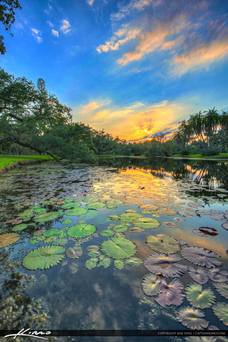 Fort Pierce White City Park Sunset with Lily Pads