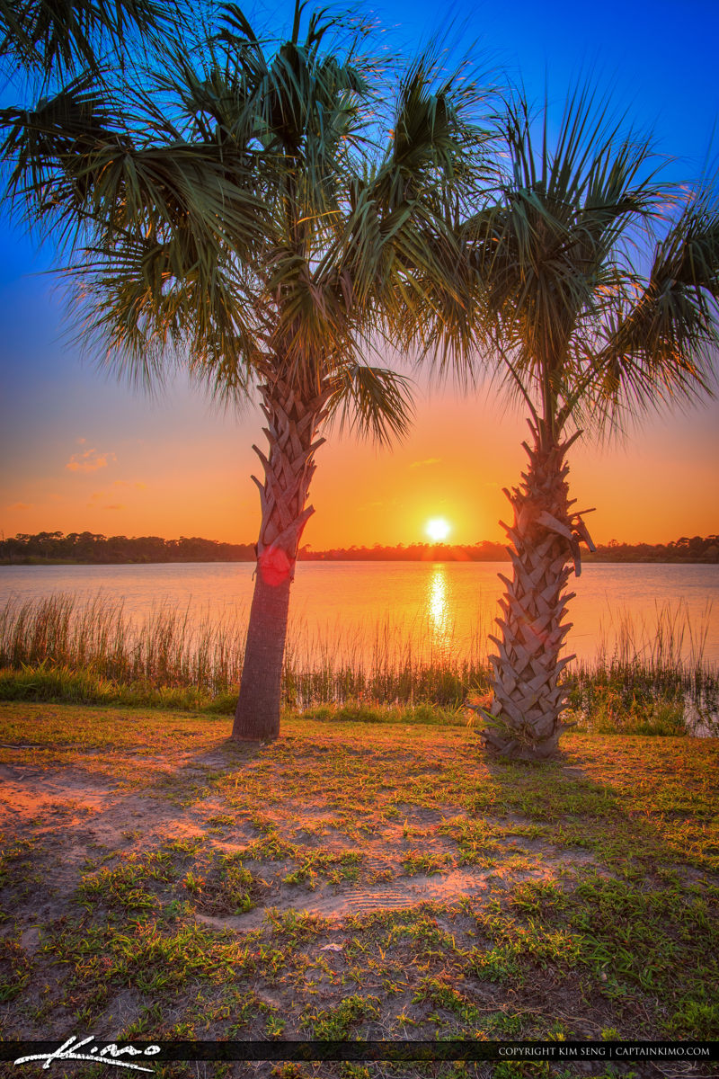 Fort Pierce George LeStrange Preserve Sunset Between Palms