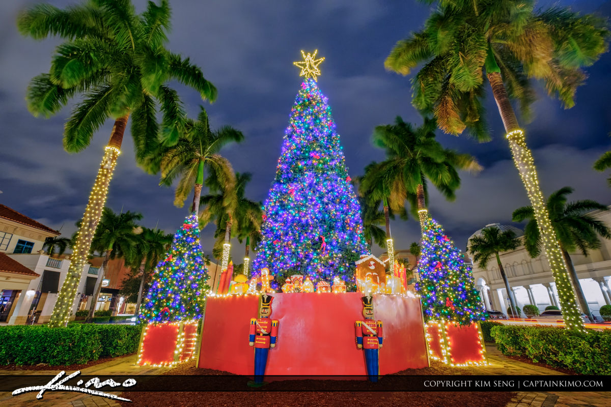 Boca Raton Christmas Tree 2016 MIzner Park