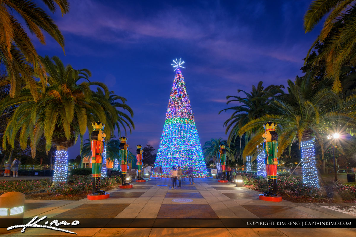 Orlando Downtown Lake Eola Christmas Tree 2016