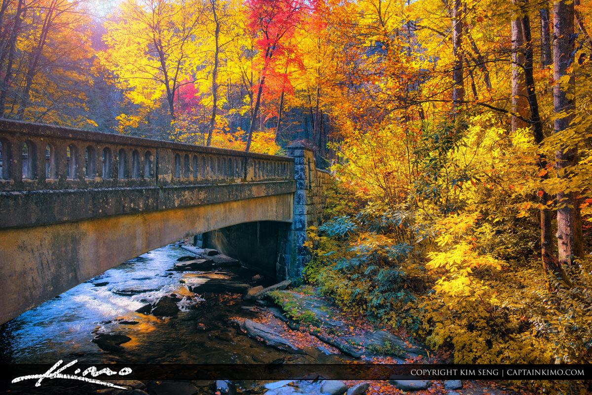 Fall Colors Brevard North Carolina Blue Ridge Mountain