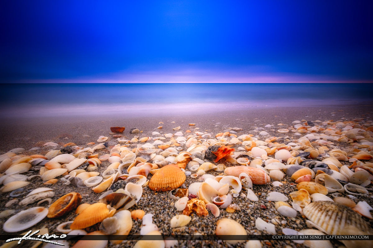 Shells at Beach Long Exposure HDR Photography