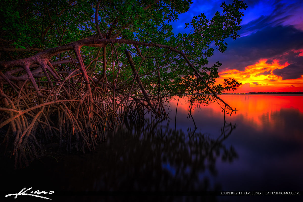 After the Sunset at the Lake Worth Lagoon Singer Island Florida