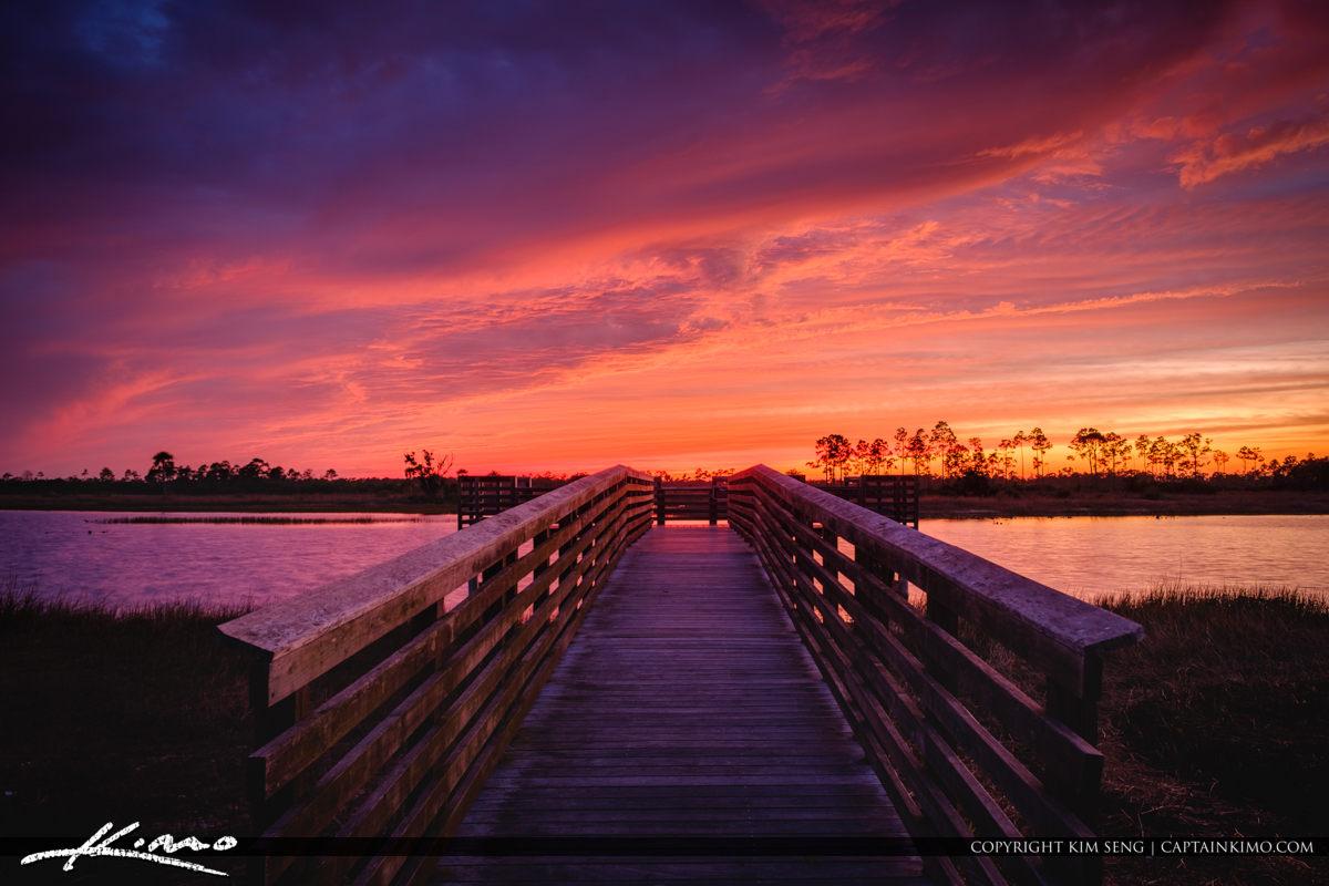 Pine Glades Natural Area Sunset Jupiter Florida