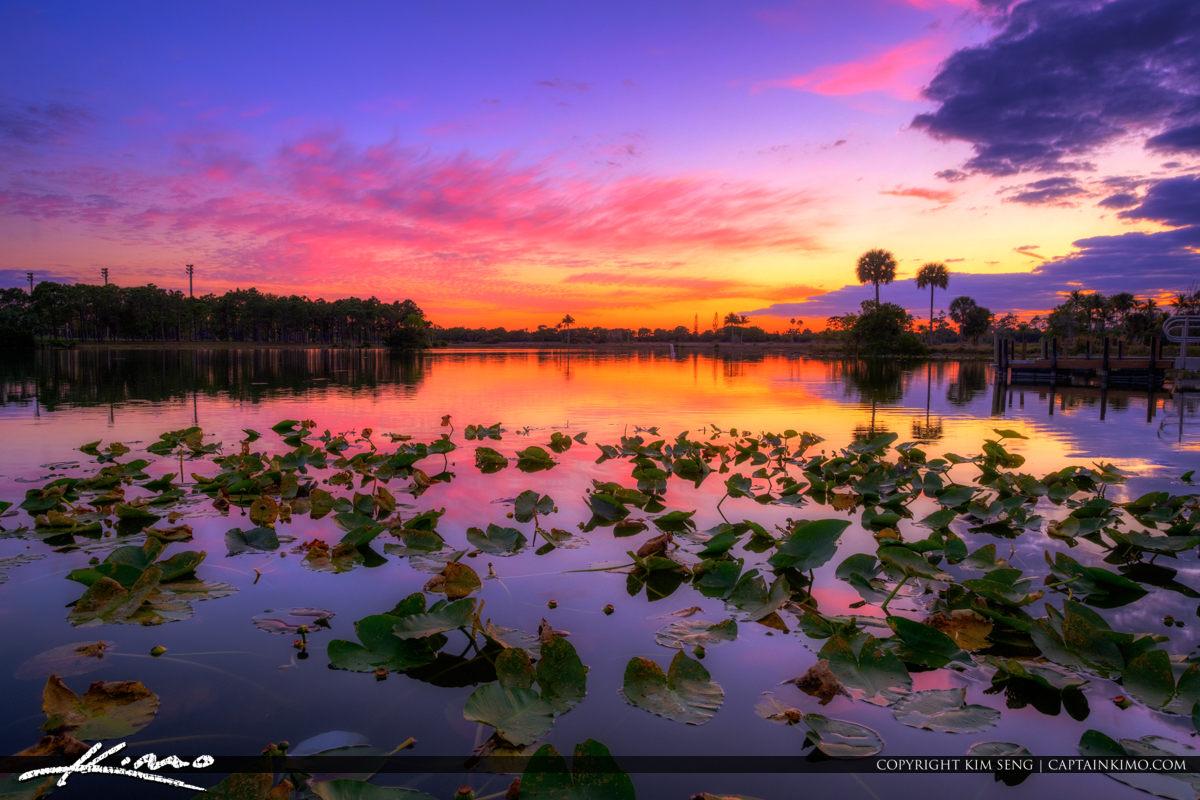 Okeeheelee Park Purple Sunset at Lake