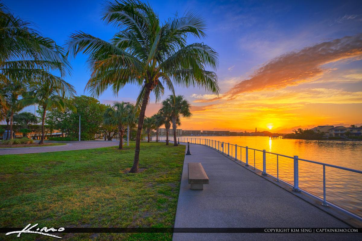 Sunrise Sawfish Bay Park Coconut Tree
