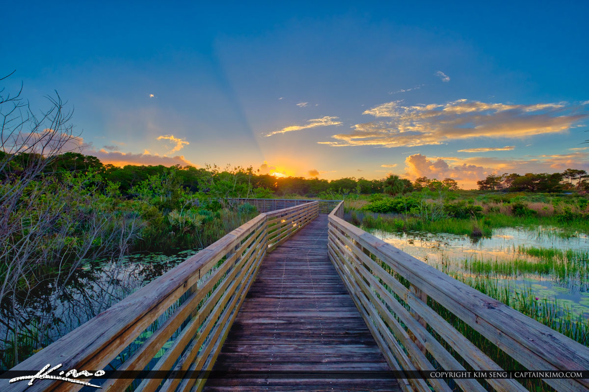 Jupiter Ridge Natural Area Boardwalk
