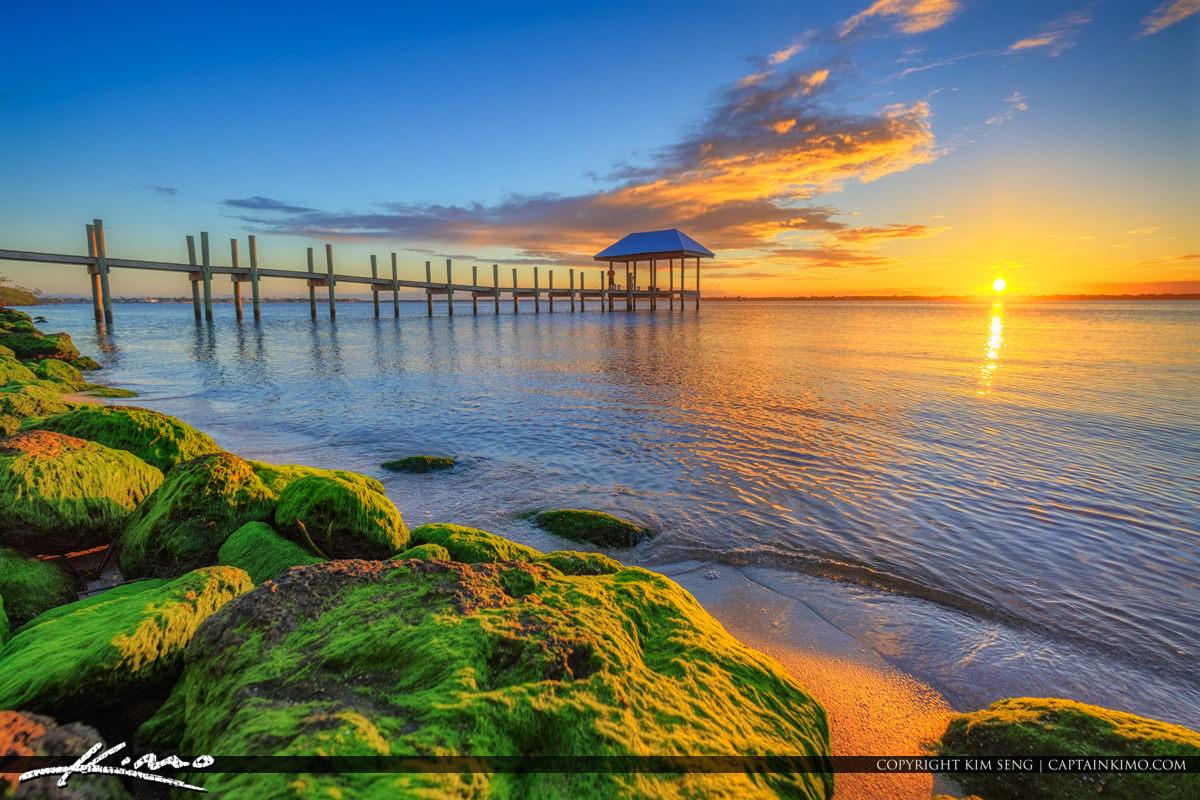 Green Algae Stuart Florida Okeechobee Waterway