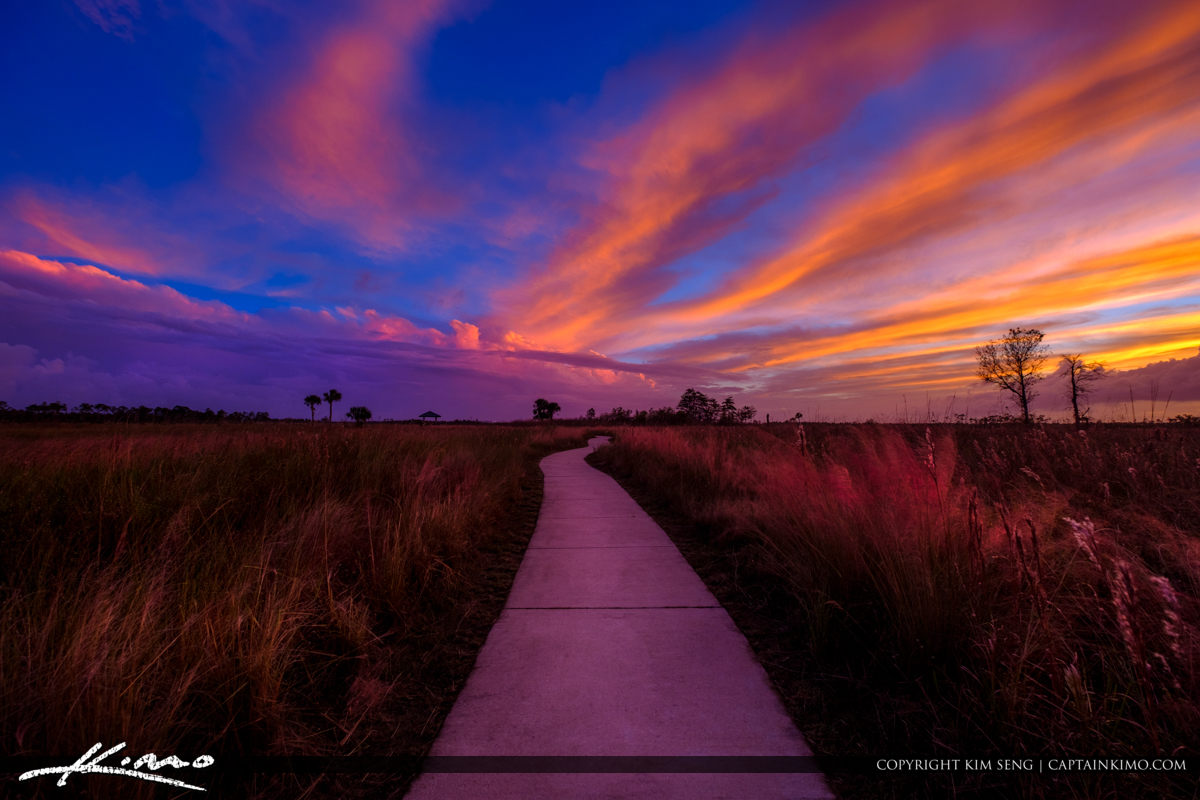 Sunset Path Jupiter Florida Pine Glades Wetlands