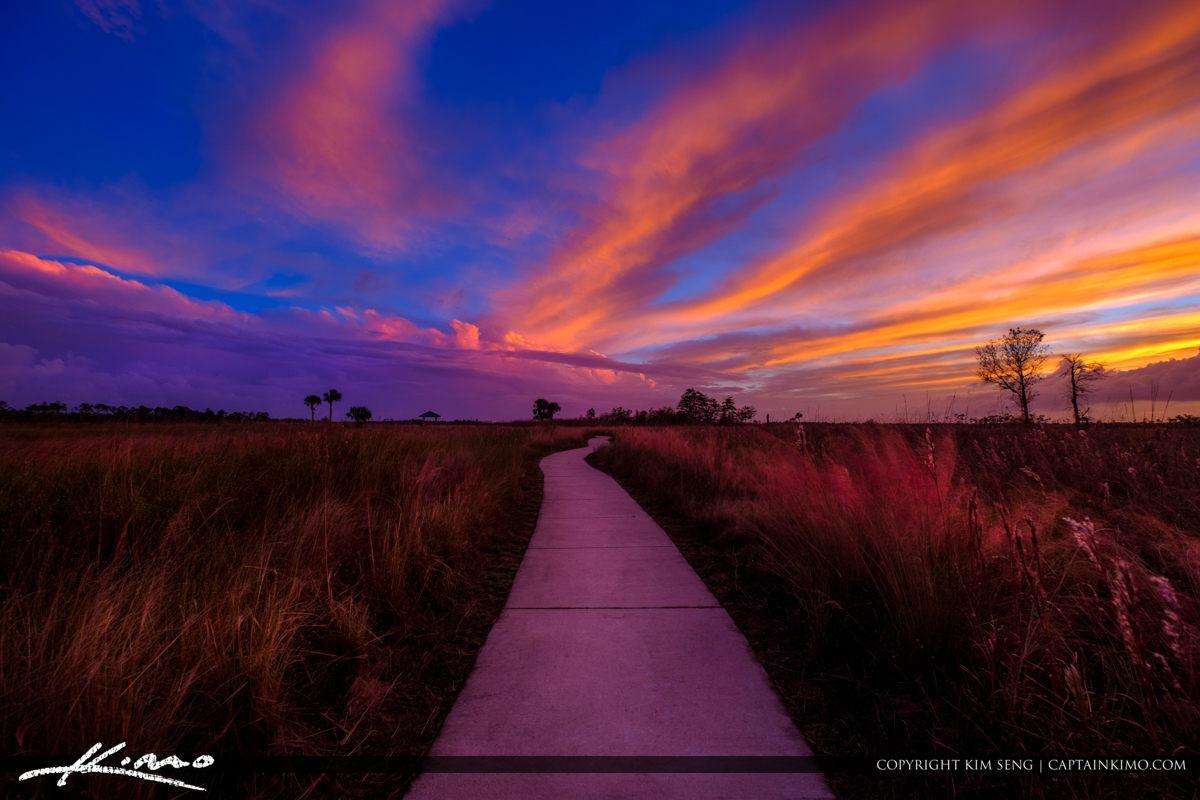 Sunset Path Jupiter Florida Pine Glades Wetlands