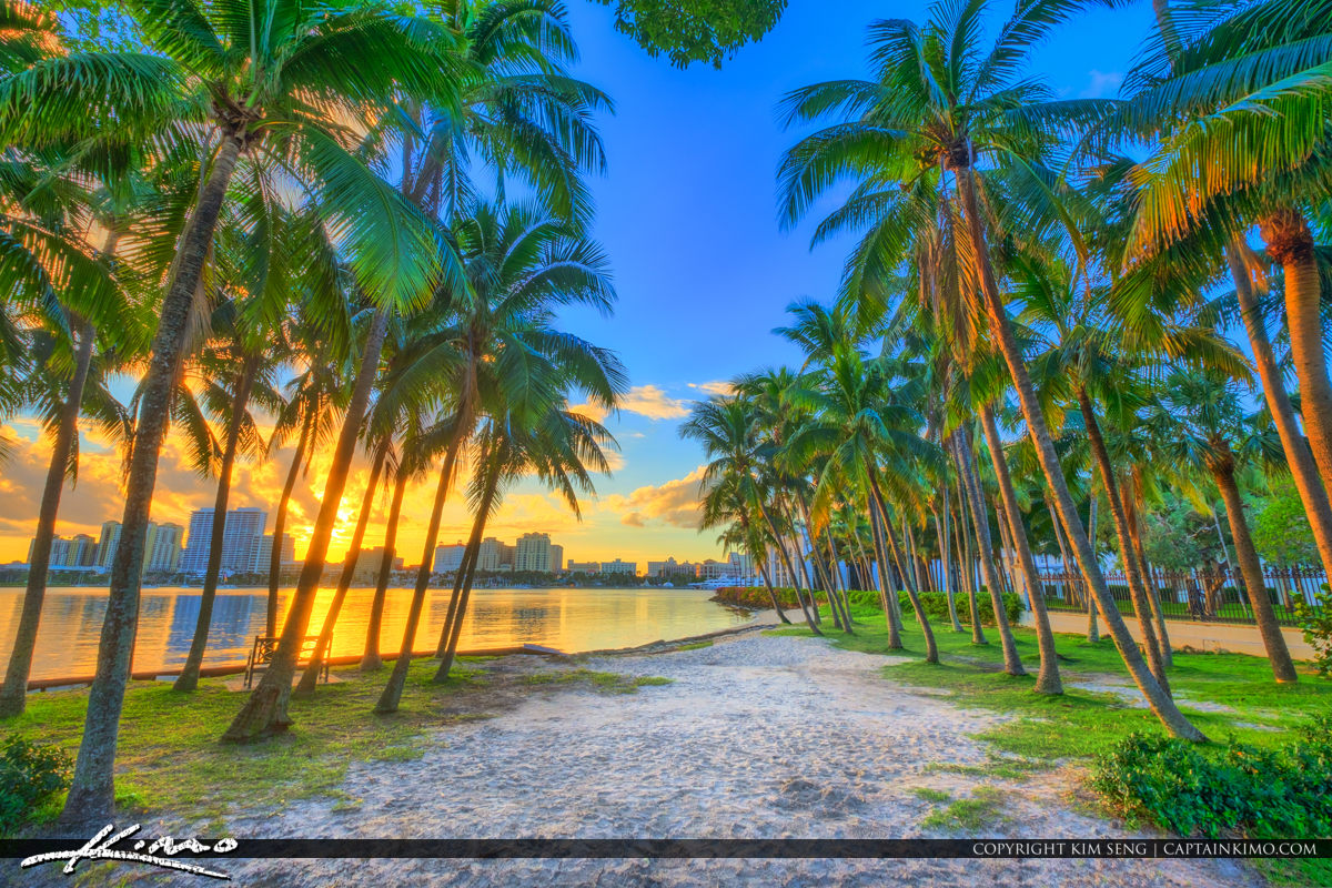 Palm Beach Island Coconut Trees Sunset Waterway