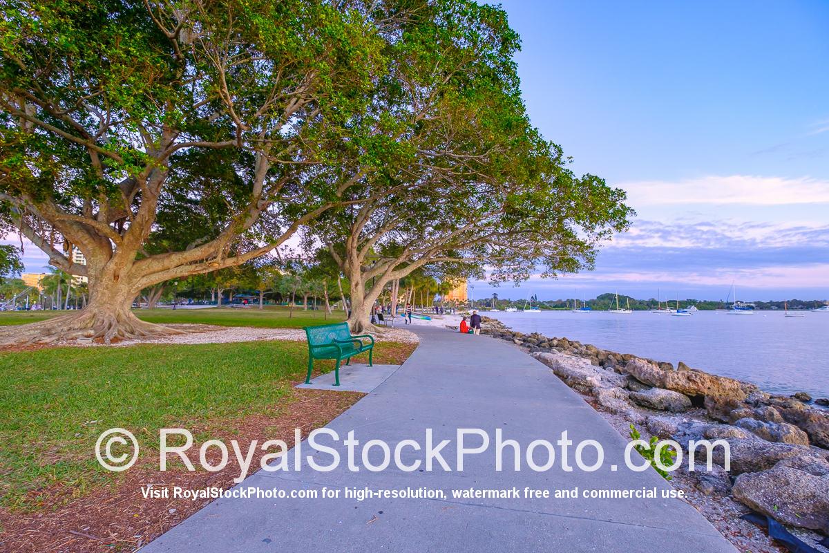 Sarasota Bayfront Sidewalk at Bayfront Park