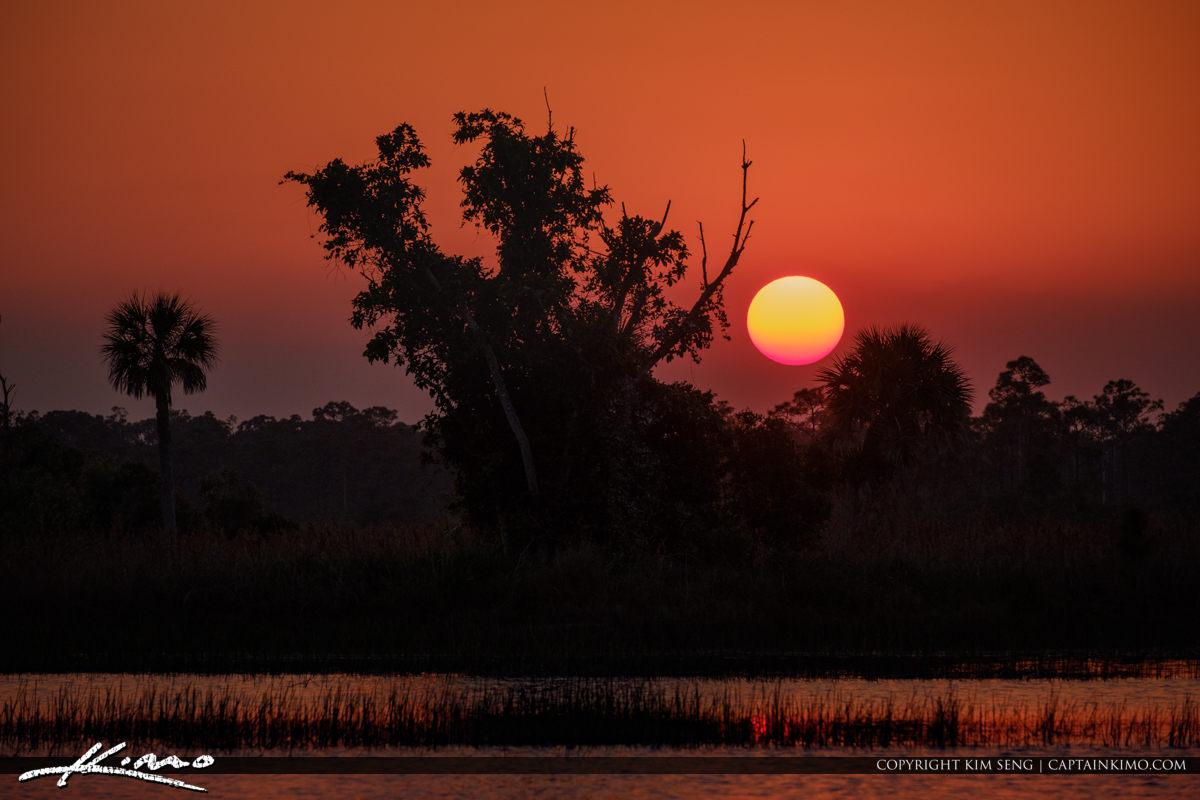Florida Sunset Wetlands Pine Glades Natural Area