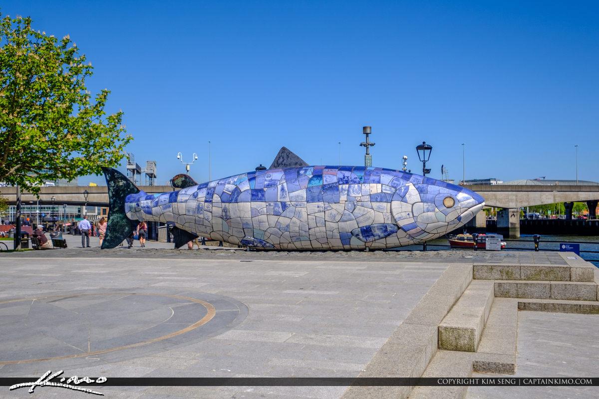 The Big Blue Fish Belfast Northern Ireland