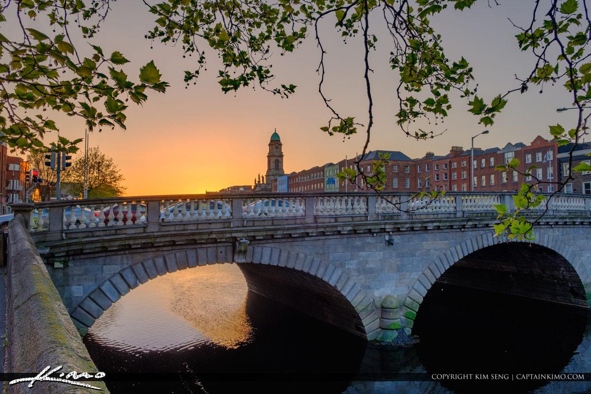 Tree Under Bridge River Liffey Dublin Republic of Ireland