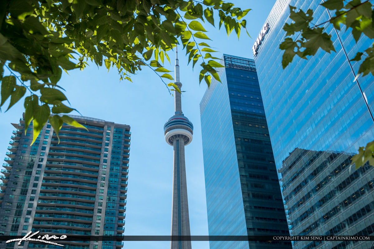 Downtown Toronto Canada CN Tower