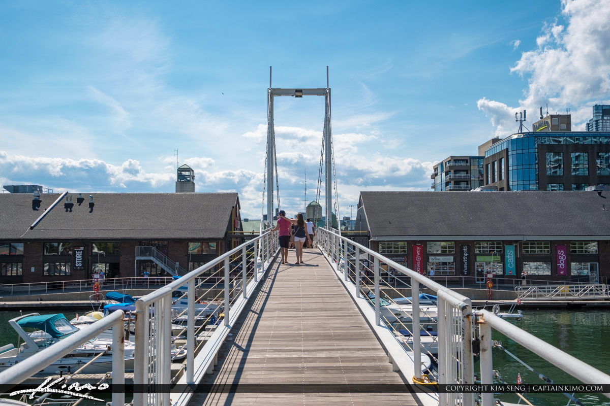 Waterfront Toronto Ontario Canada Bridge