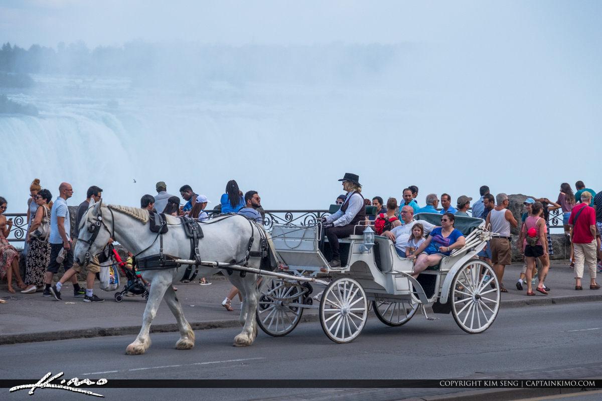 Niagara Falls ON Canada Horse Carriage at Park