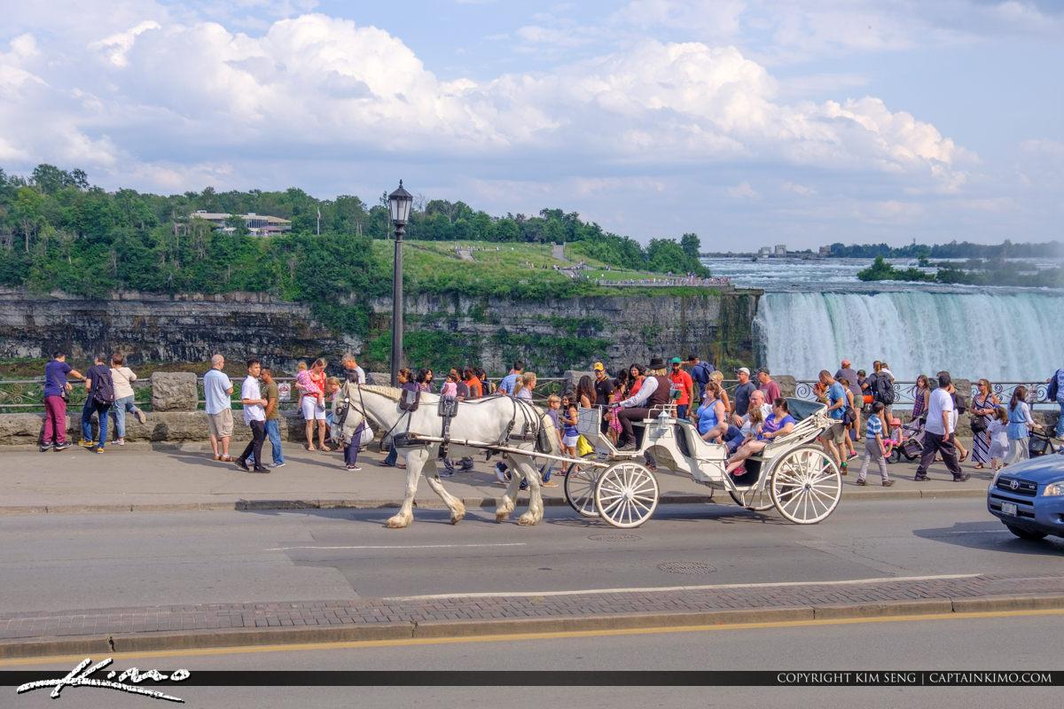Niagara Falls ON Canada Horse Carriage at Waterfall