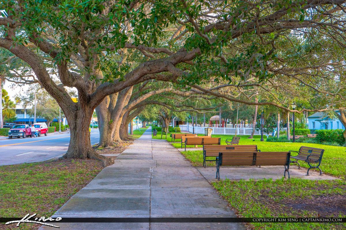 Oak Tree and Bench Pocahontas Park Historic Downtown Vero Beach