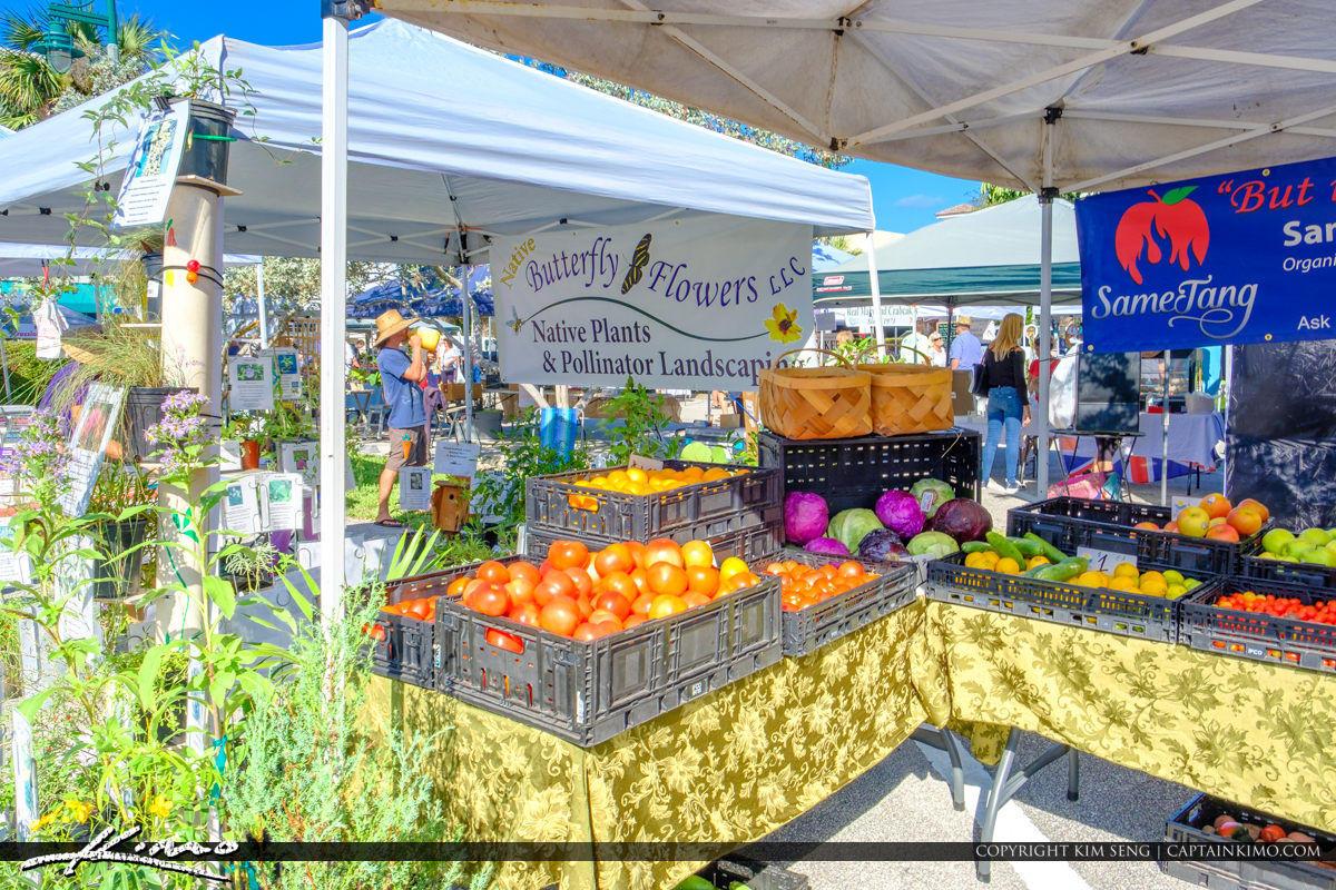 Green Market Vero Beach Florida Fruits and Vegetables