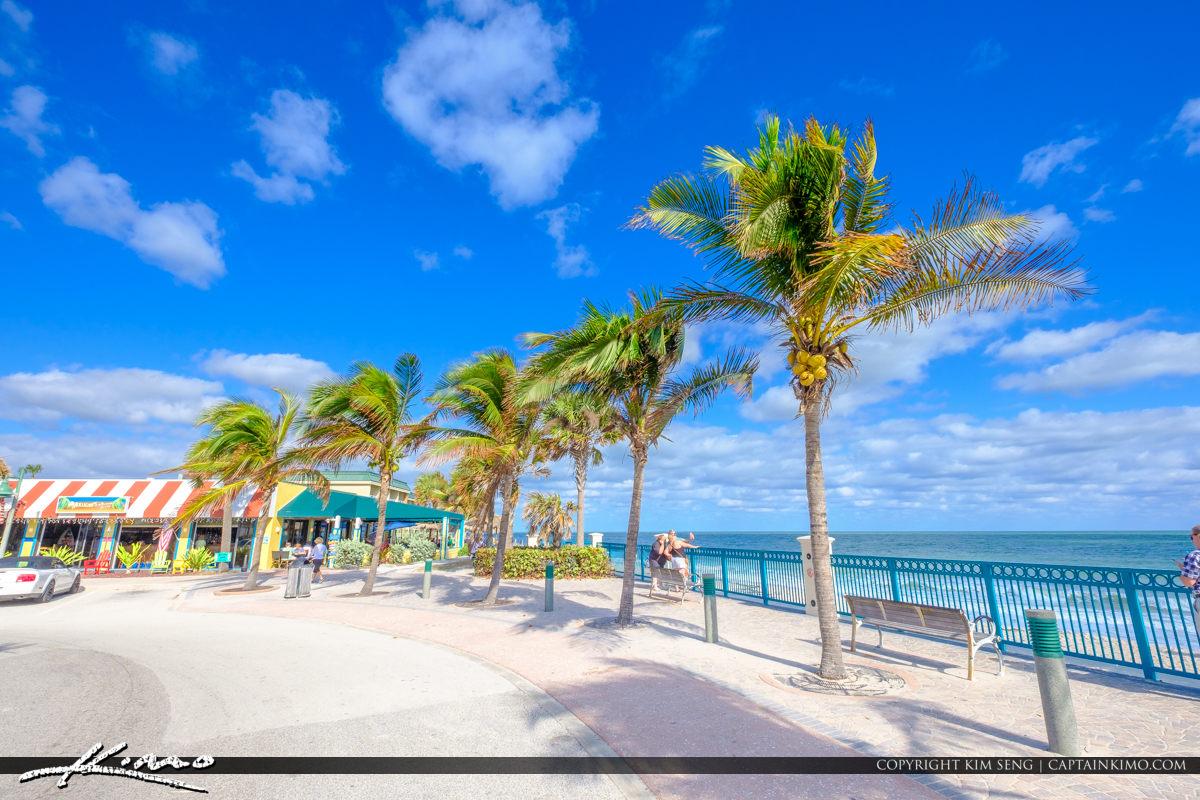 Sexton Plaza Beach Vero Beach Florida Mulligans and Coconut Tree