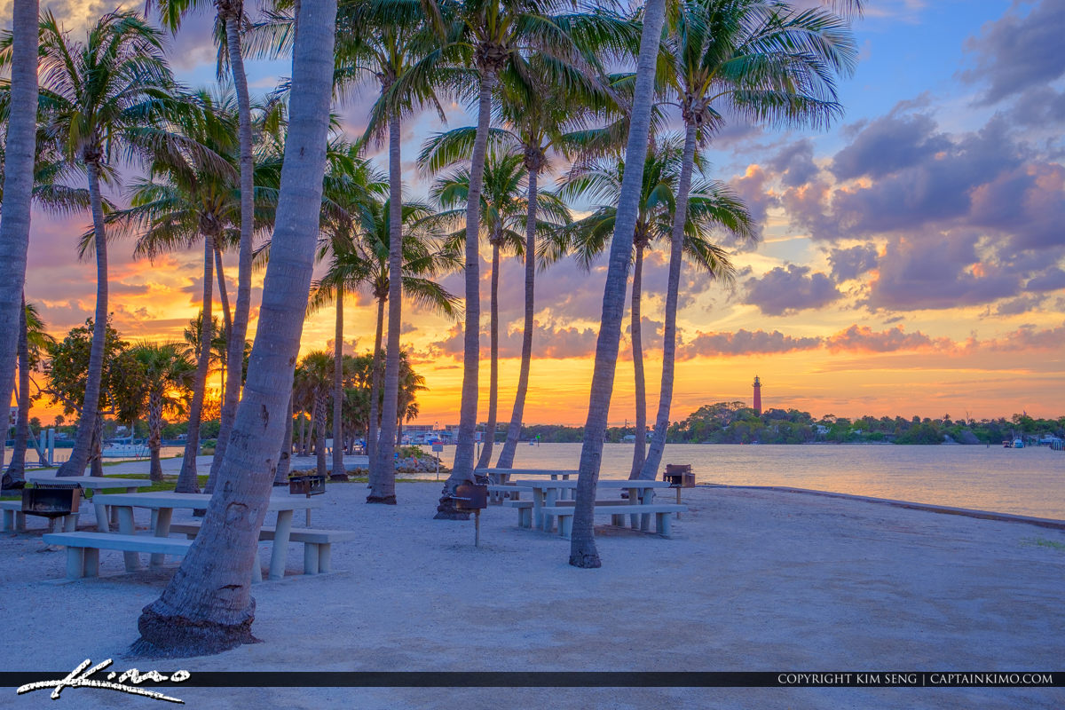 Dubois Sunset Jupiter Lighthouse View and Coconut Tree