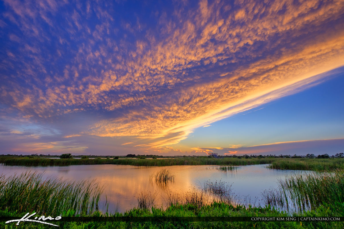 Viera Wetlands Melbourne Florida Bevard County Sunset