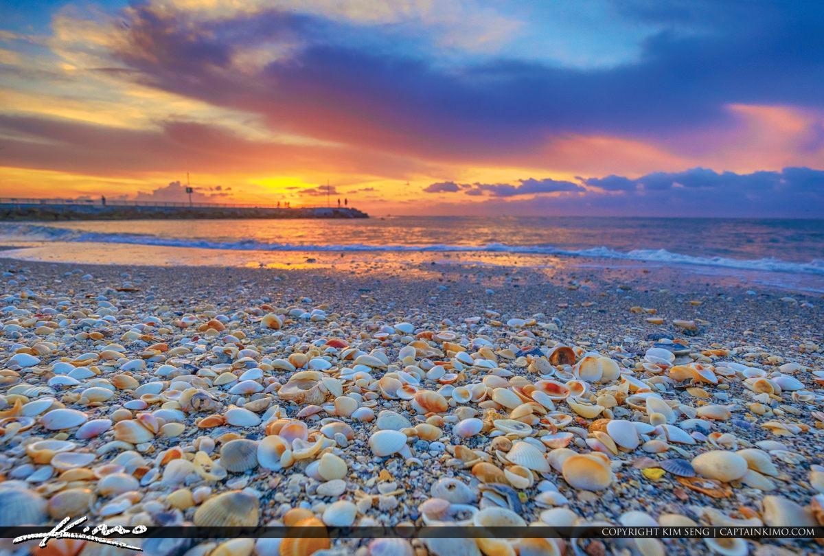 Jupiter Inlet Seashells Sunrise at the Jetty