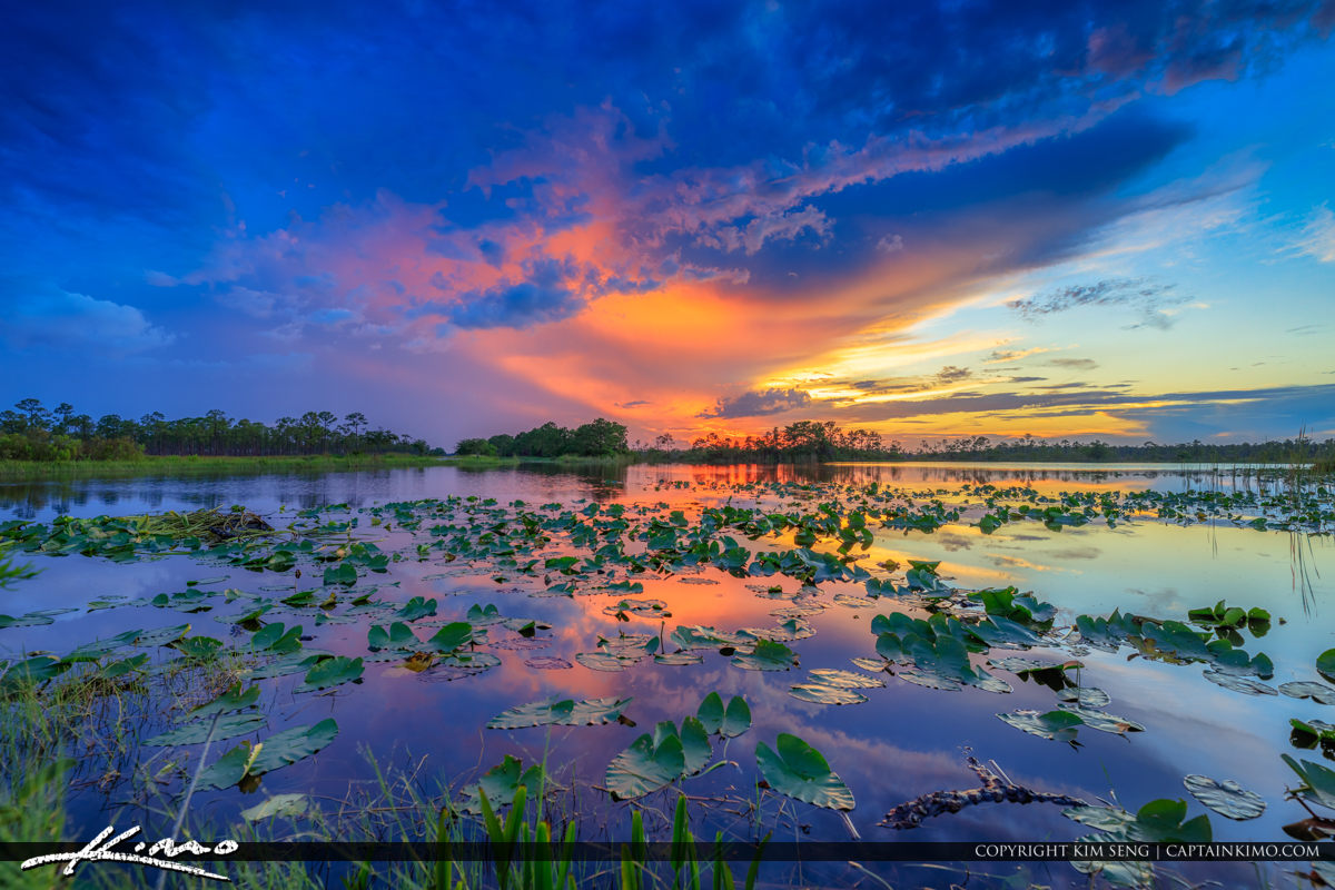 Hungryland Sunset Over Florida Wetlands in Western Palm Beach Co