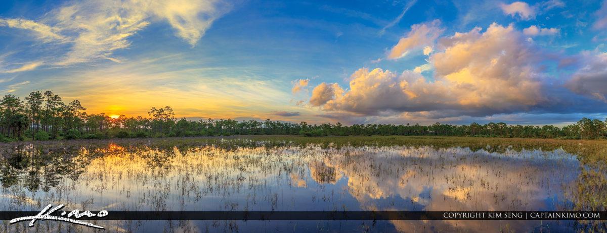 Royal Palm Beach Pines Natural Area RPB Florida Sunset Panorama
