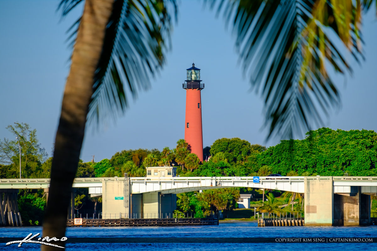 Jupiter Lighthouse Coconut Palm at Waterway