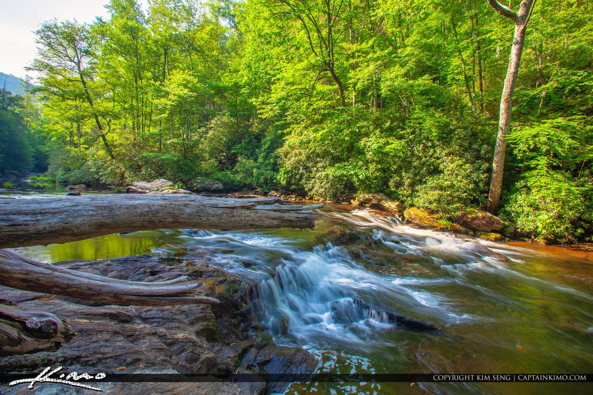 Cullasaja River Highlands North Carolina Blue Ridge Parkway Log