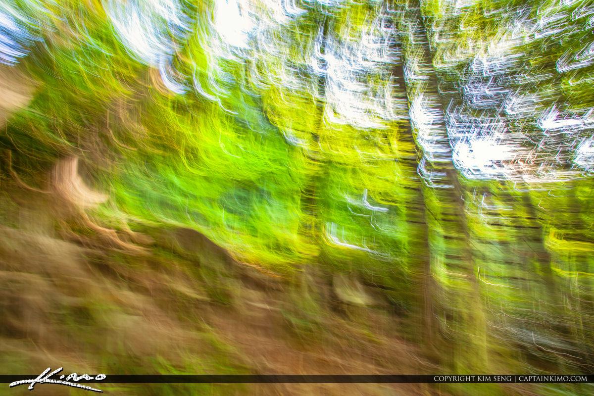 Cullasaja River Highlands North Carolina Blue Ridge Parkway Blur
