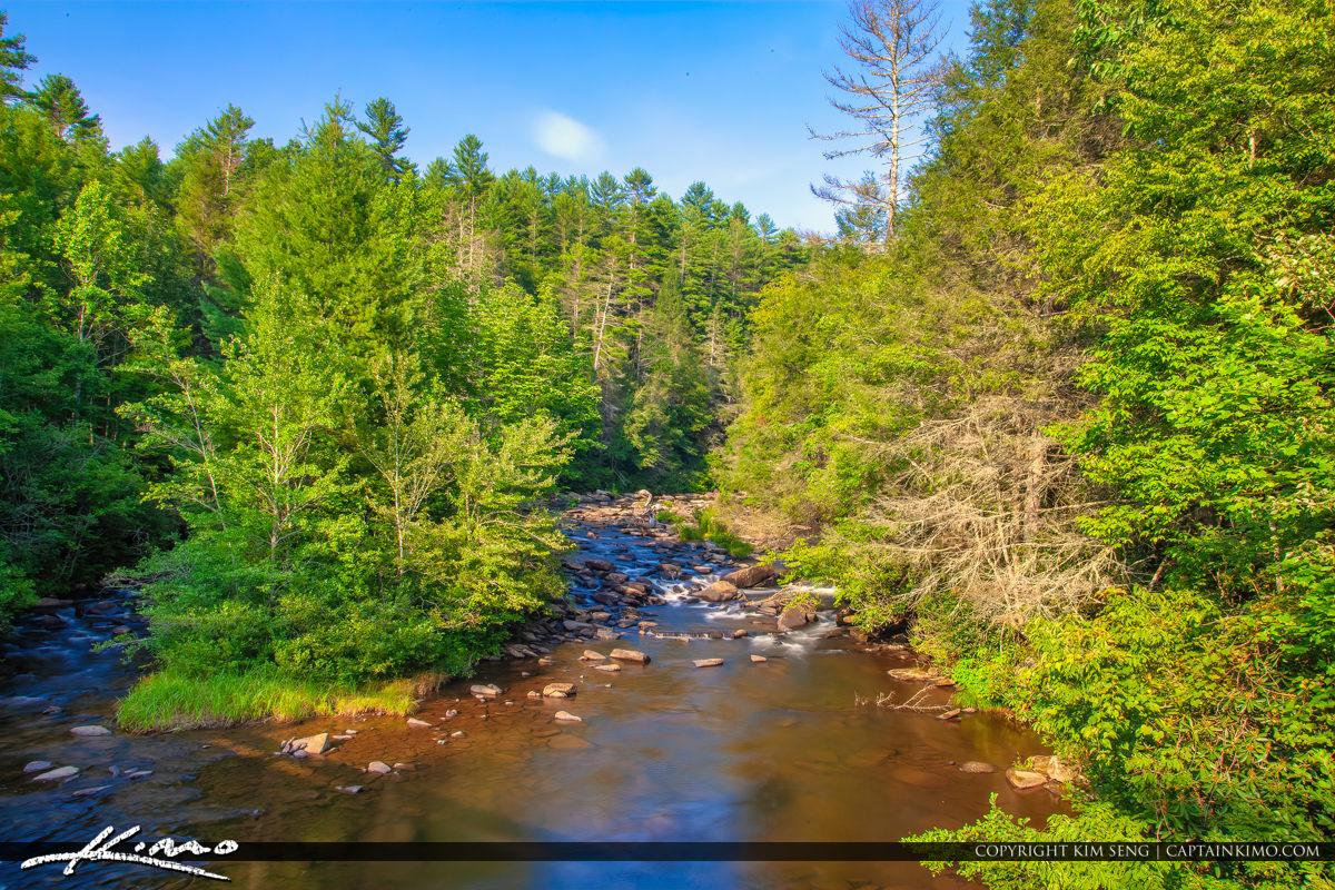 Dupont State Forest North Carolina along the Little River in Bev