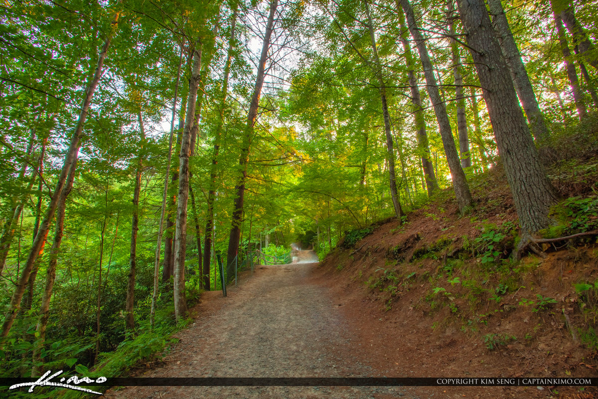 Dupont State Forest North Carolina Triple Falls Trail along the