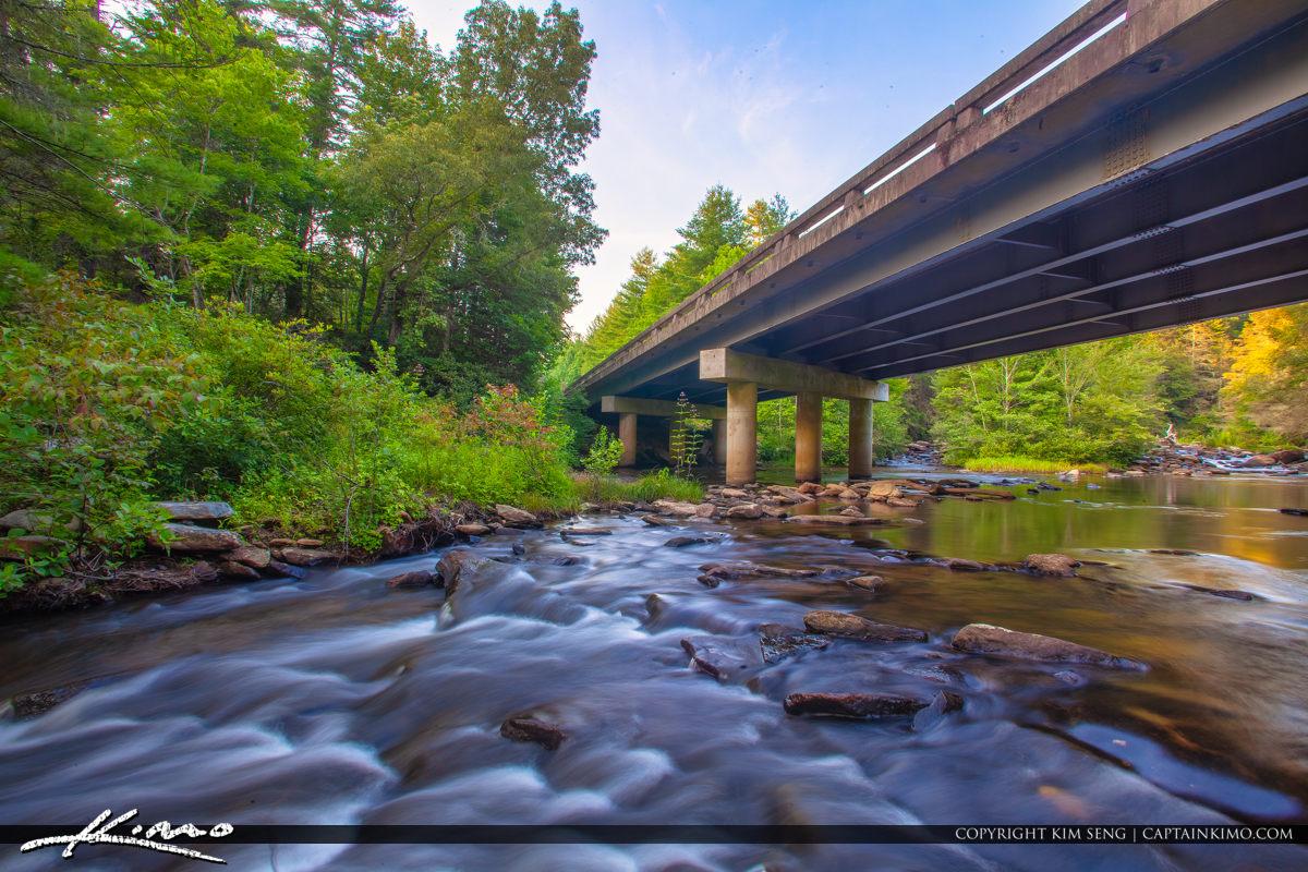 Dupont State Forest North Carolina Stream Bridge Little River St