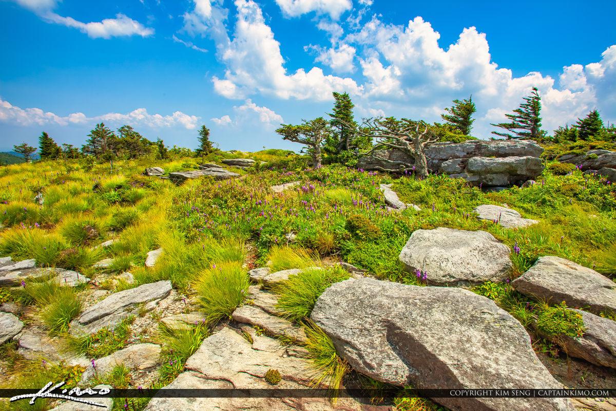 Grandfather Mountain State Park Banner Elk North Carolina Rocks