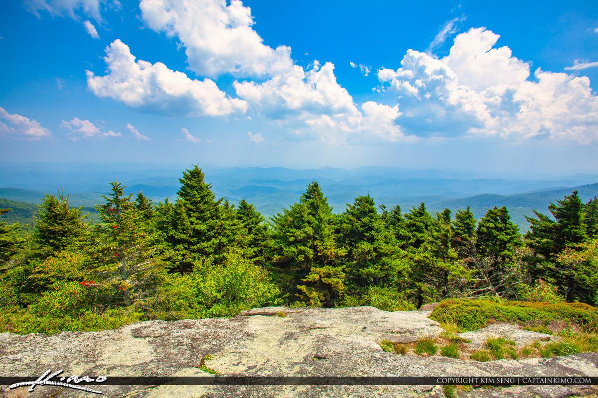 Grandfather Mountain State Park Banner Elk North Carolina Pine T