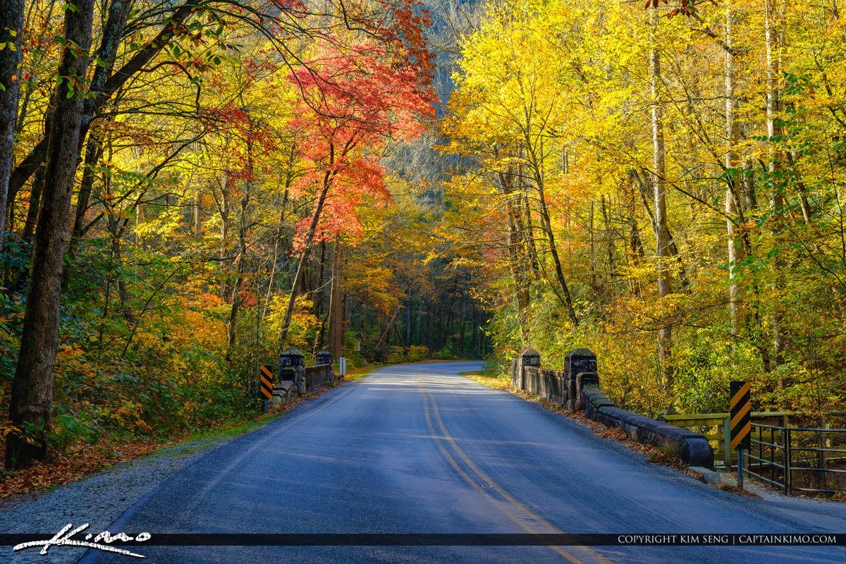 Bridge Fall Colors Blue Ridge Parkway Moore Cove Falls Trail Bre