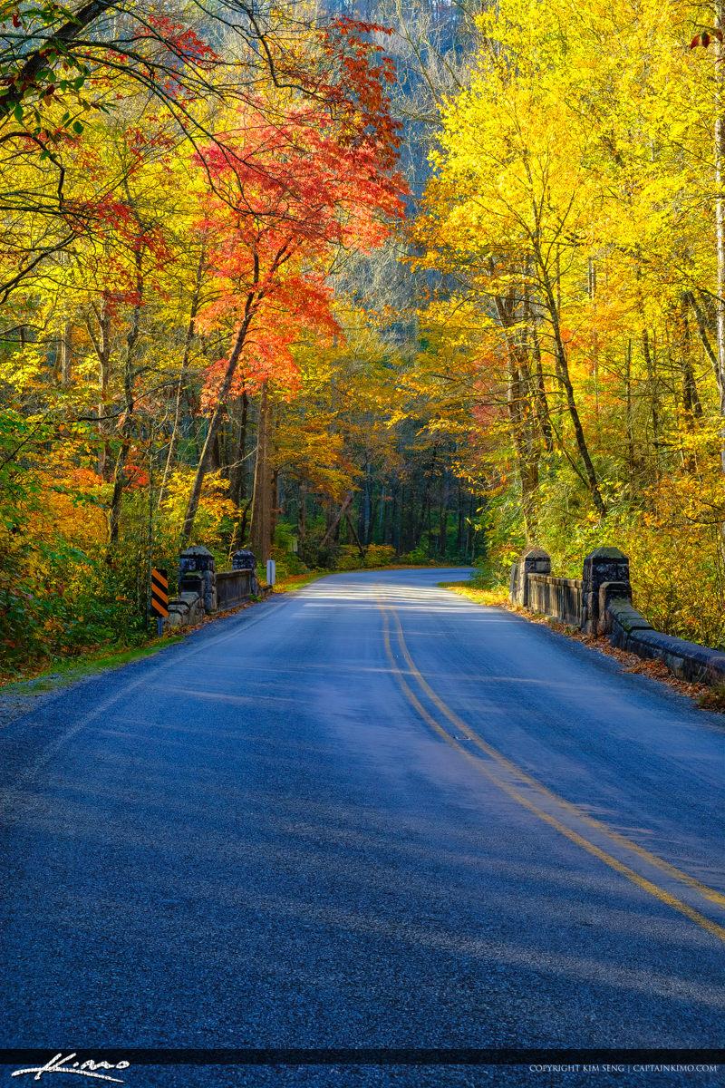 Road Fall Colors Blue Ridge Parkway Moore Cove Falls Trail Breva
